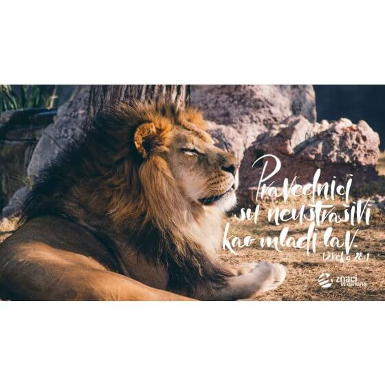 Pozadina - Pravednici su neustrašivi kao mladi lav