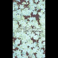 Pozadina - Živite u miru