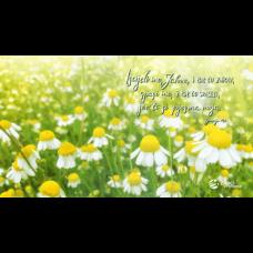 Pozadina - Iscijeli me, Jahve, i bit ću zdrav