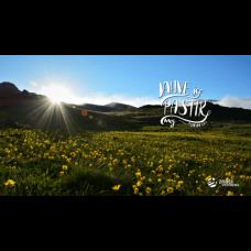 Pozadina - Jahve je pastir moj